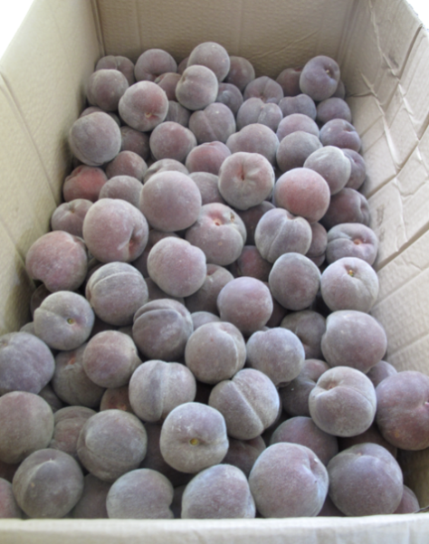 Screen shot 2015-03-01 at 6.10.34 PM