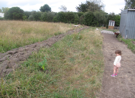 Screen shot 2015-03-01 at 6.11.35 PM