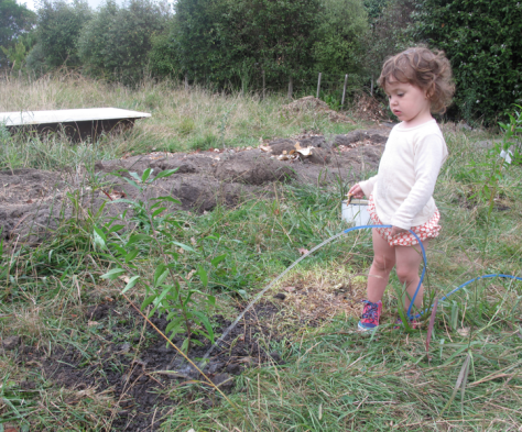 Screen shot 2015-03-01 at 6.12.32 PM