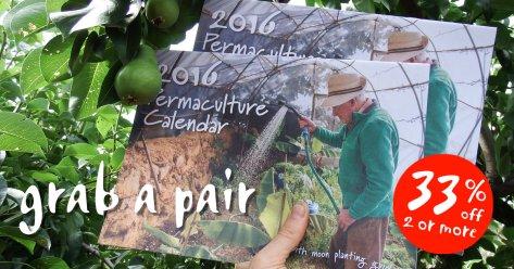 Grab a Pair of Calendars FB